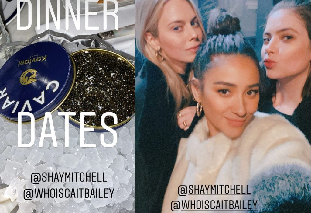 Collage from Ashley Benson's Instagram Stories