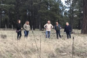 'Sister Wives' Fans Want to Know What Is Going On With the Coyote Pass Property
