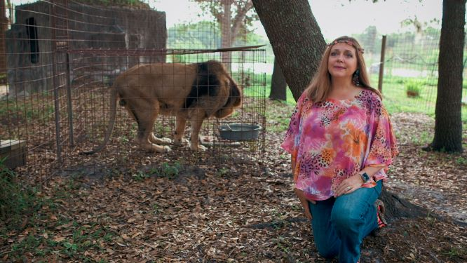 'Tiger King': Carole Baskin Slams Netflix Docuseries, Explains the Major Difference in Her Approach Compared to Joe Exotic thumbnail