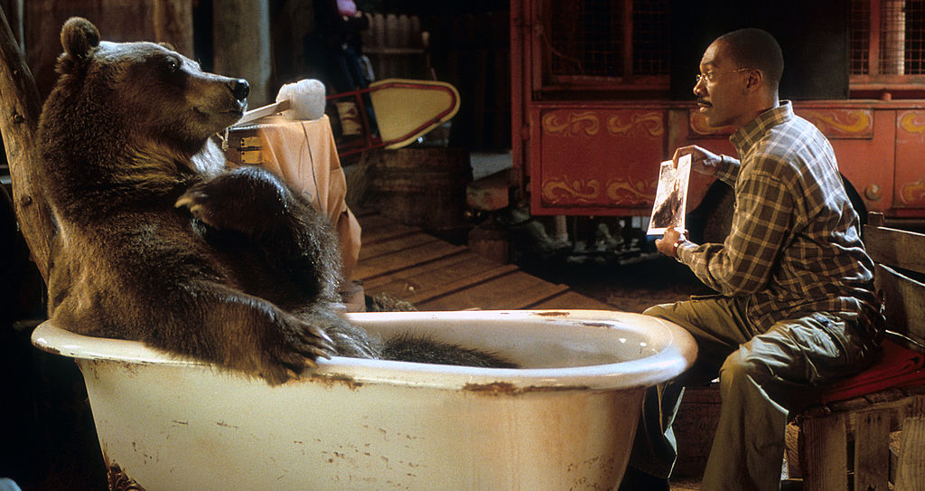 'Dr. Dolittle 2', 2001 | 20th Century-Fox/Getty Images