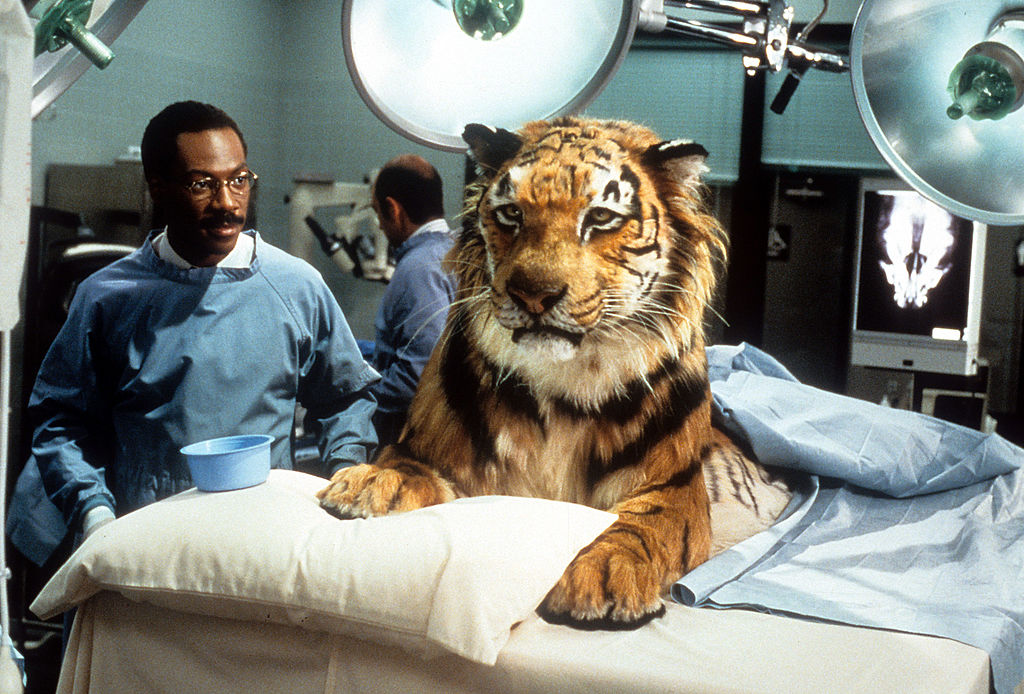 Eddie Murphy of 'Doctor Dolittle', 1998