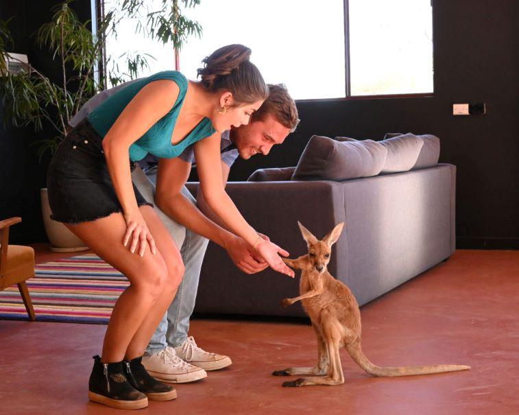 Hannah Ann, Peter Weber, and a baby kangaroo