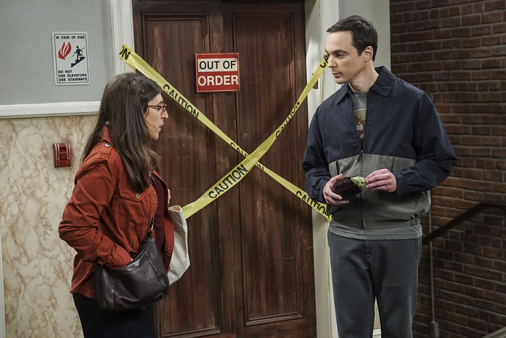 Amy Farrah Fowler (Mayim Bialik) and Sheldon Cooper (Jim Parsons)
