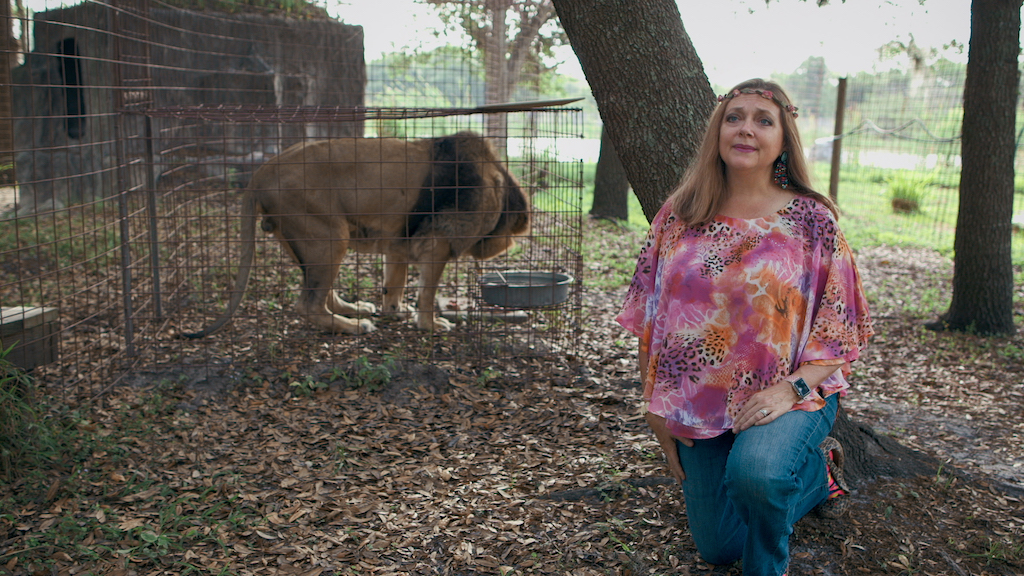 Carole Baskin kneeling next to a tiger cage