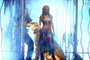 'Tiger King': Doc Antle Details His Time Onstage with Britney Spears at the VMAs