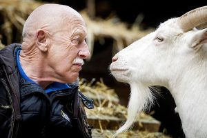 'The Incredible Dr. Pol' is Celebrating Farm Animals Day