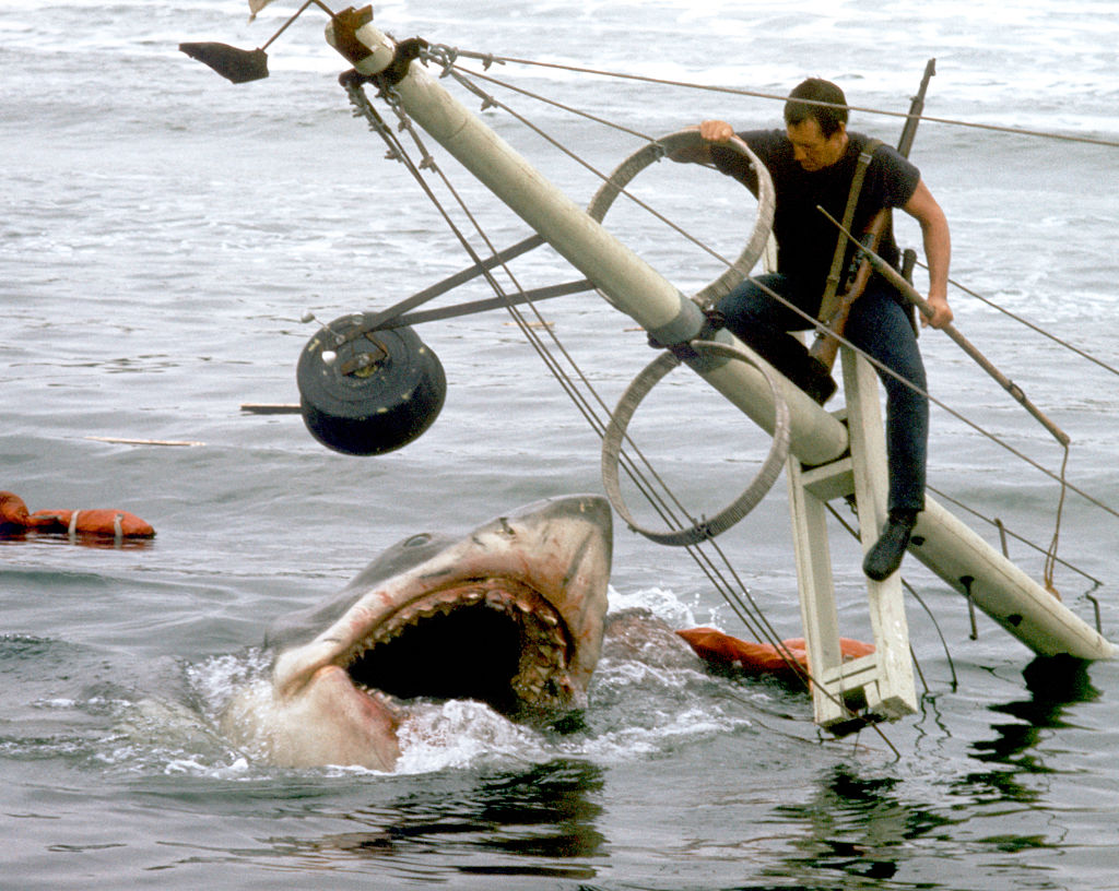 American actor Roy Scheider on the set of Jaws, directed by Steven Spielberg