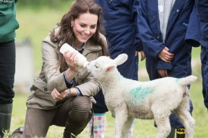 Kate Middleton: 8 Photos of the Duchess of Cambridge With Animals