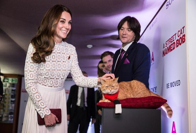 Kate Middleton and a cat