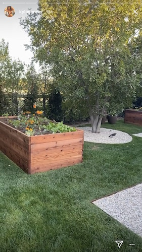 Kylie Jenner shows off her new garden