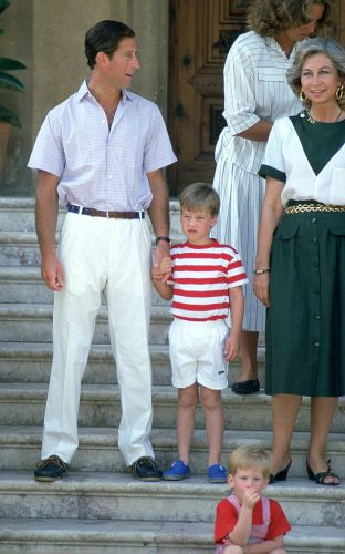 Prince Charles, Prince William, and Prince Harry at a photocall in Spain