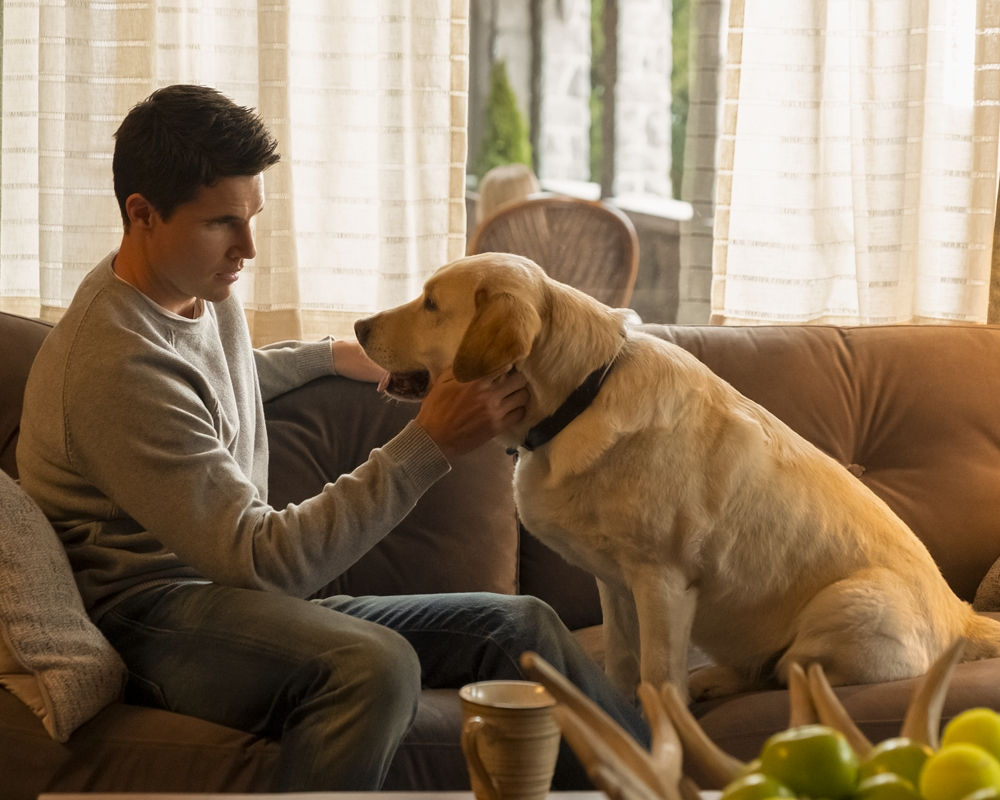Robbie Amell and Dog
