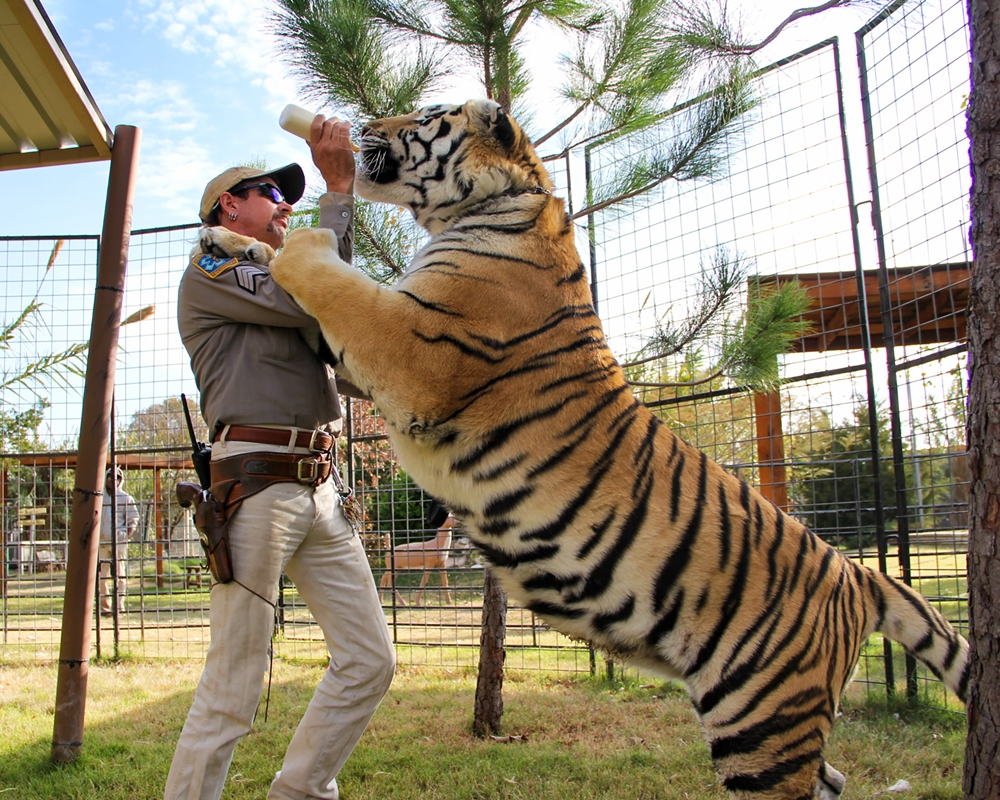 Joe Exotic with a tiger in Tiger King