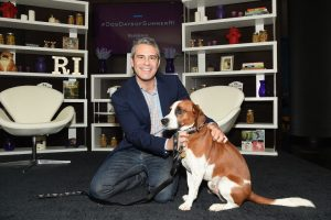 Andy Cohen Shares Heartbreaking News That He Had to Re-Home His Dog Wacha