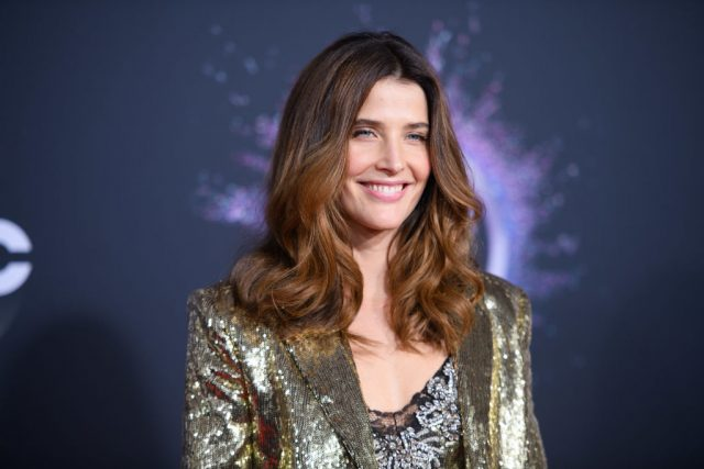 'How I Met Your Mother': Cobie Smulders' Real-Life Husband Made a Few Cameos In the Series