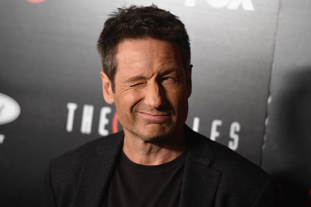 David Duchovny of The X-Files