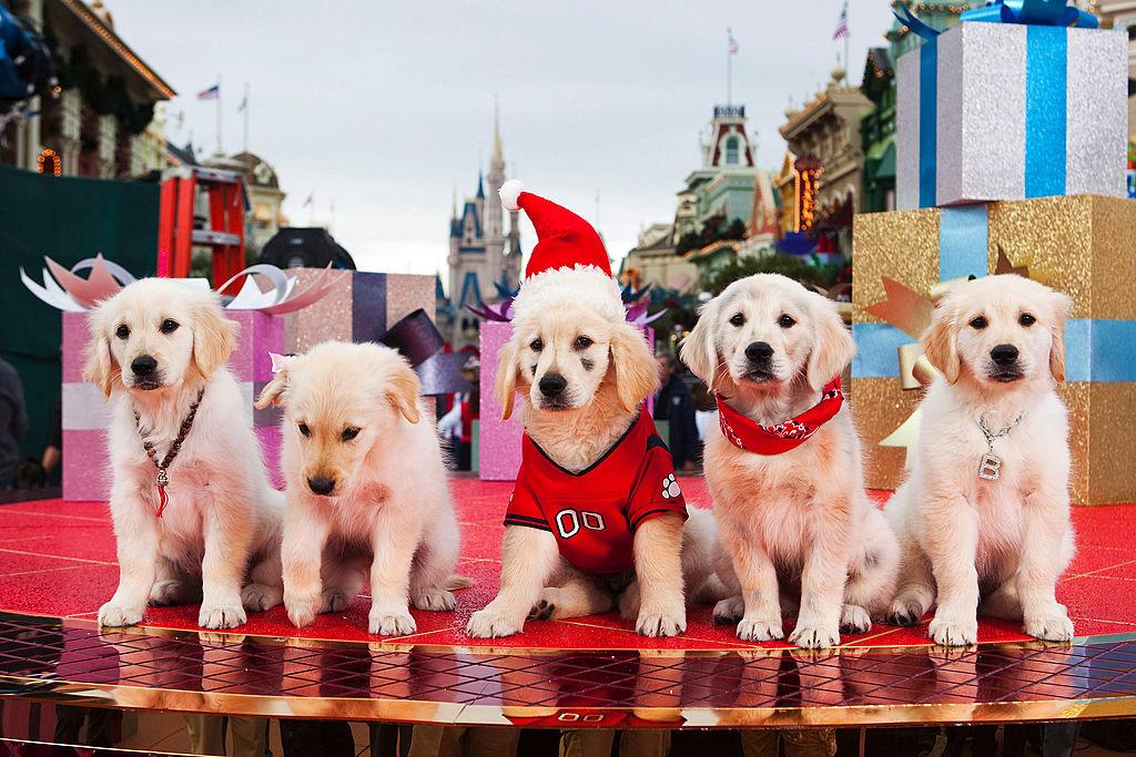 Disney's Santa Buddies