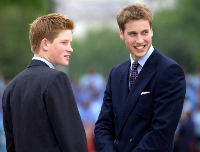 Prince Harry and Prince William attend parade for Queen Elizabeth II's Golden Jubilee