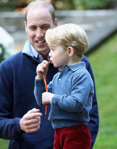 Prince William and Prince George attend a children's party