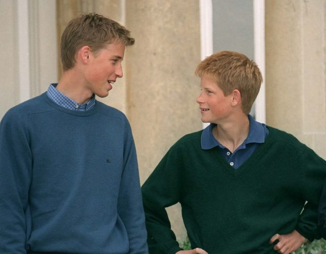 Prince William and Prince Harry at Highgrove