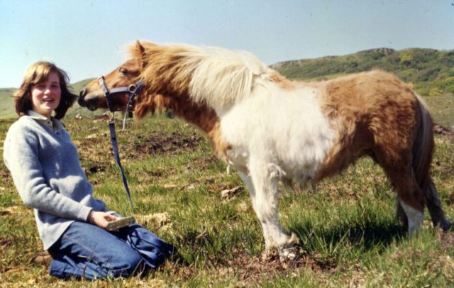 Princess Diana sits in the grass with a pony