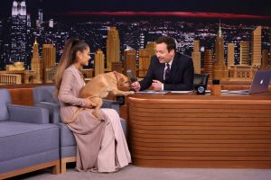 Ariana Grande Has Almost 1 Dozen Pets; Here Are Their Names and Types