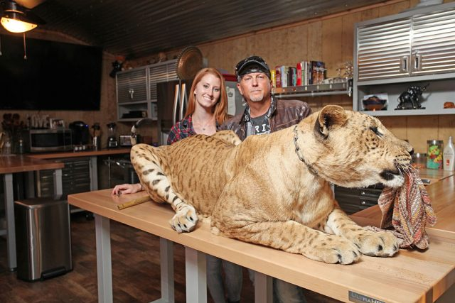 'Tiger King': Jeff Lowe Worries Carole Baskin Will Turn Joe Exotic Zoo Into 'The Graceland of Oklahoma'