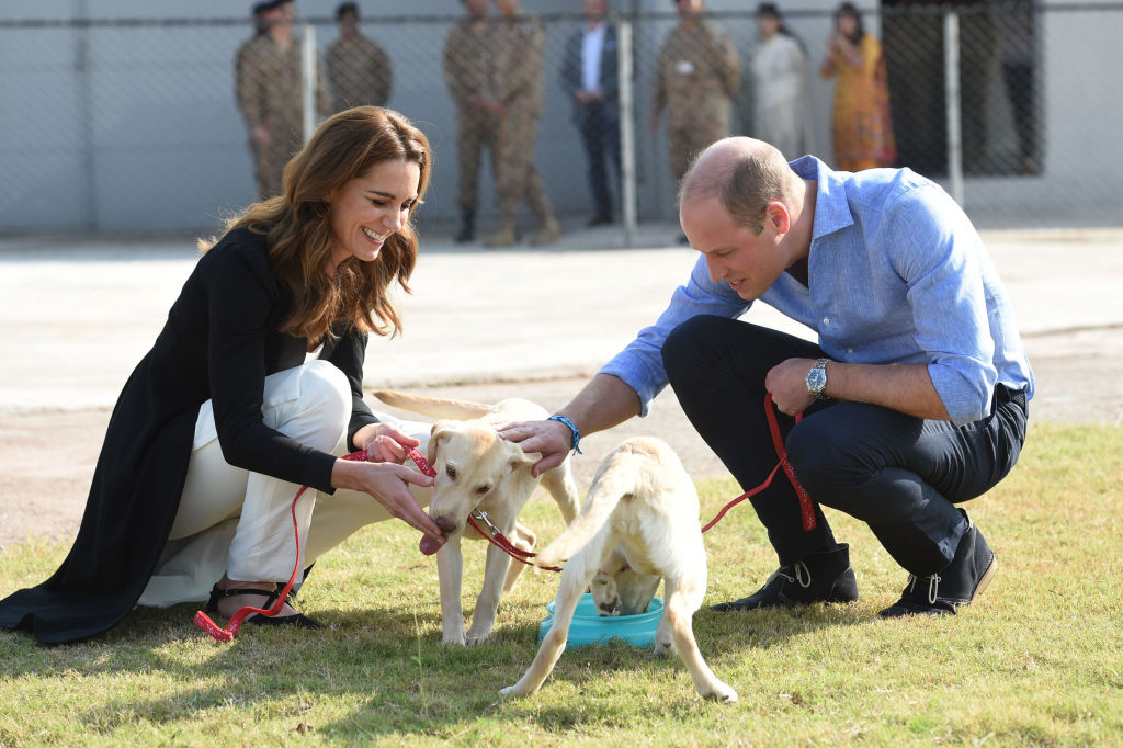 Kate Middleton and Prince William smiling, kneeling down to pet dogs
