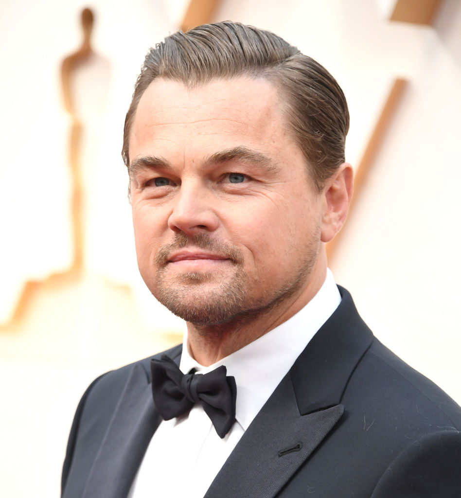 Leonardo DiCaprio arrives at the 92nd Annual Academy Awards at Hollywood and Highland
