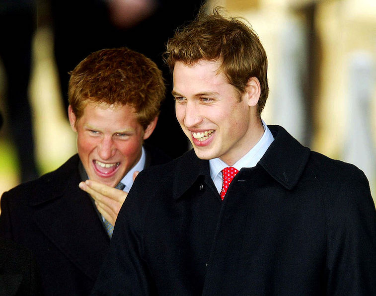 Prince William and Prince Harry share a laugh as kids.