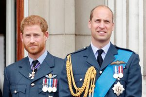 Prince Harry Royal Rift With Prince Williams Is Reportedly Rooted in Duke of Sussex's Sensitivity to Criticism