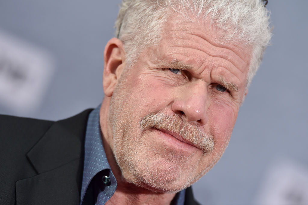 Ron Perlman attends the 2019 TCM Classic Film Festival Opening Night Gala and 30th Anniversary Screening of 'When Harry Met Sally' at TCL Chinese Theatre on April 11, 2019 in Hollywood, California.