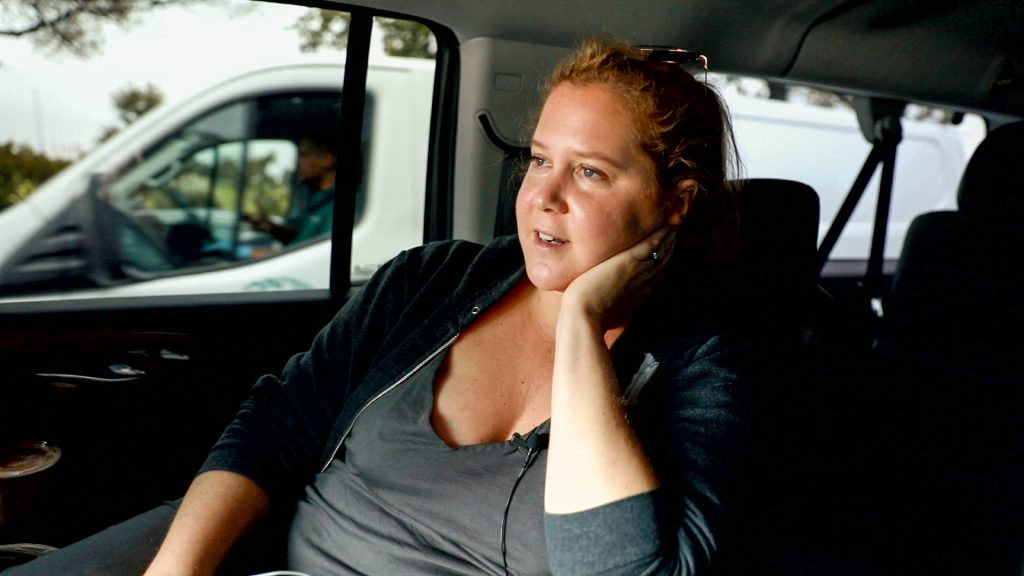 Amy Schumer in Expecting Amy