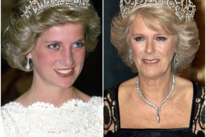Are Princess Diana and Camilla Parker Bowles Actually Related?