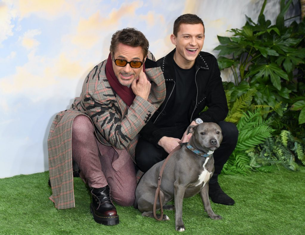 Tom Holland, the MCU version of Spider-Man, poses with Robert Downey Jr. (the MCU's Iron Man) and a dog at the premier of 'Doolittle'