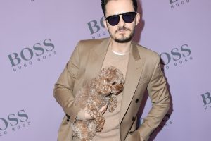 Orlando Bloom and Other Celebrities Whose Dogs Died Tragically