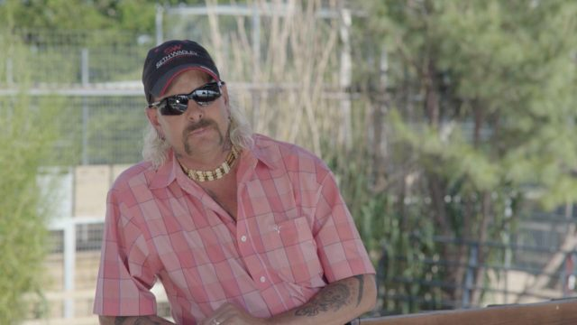New Animal Planet Special 'Surviving Joe Exotic' Features Never-Before-Seen Footage of the 'Tiger King'