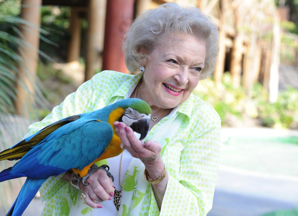 Betty White in 2014   Angela Weiss/Getty Images