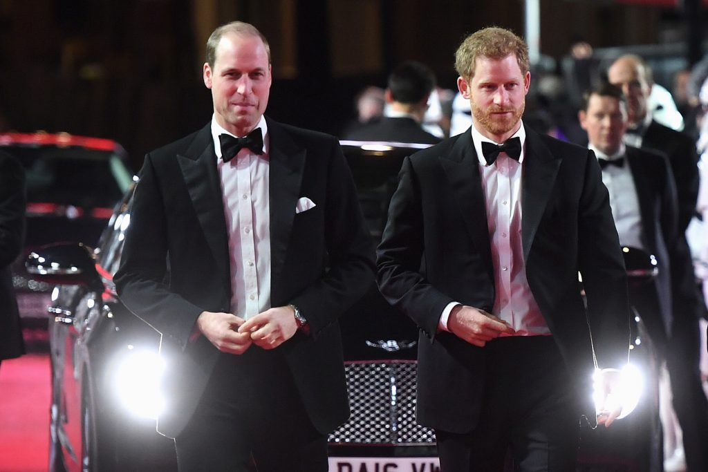 Prince William and Prince Harry, slightly smiling