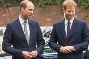Why Prince Harry Felt Like He Was Thrown Under the Bus to 'Make Prince William Look Good,' Book Explains