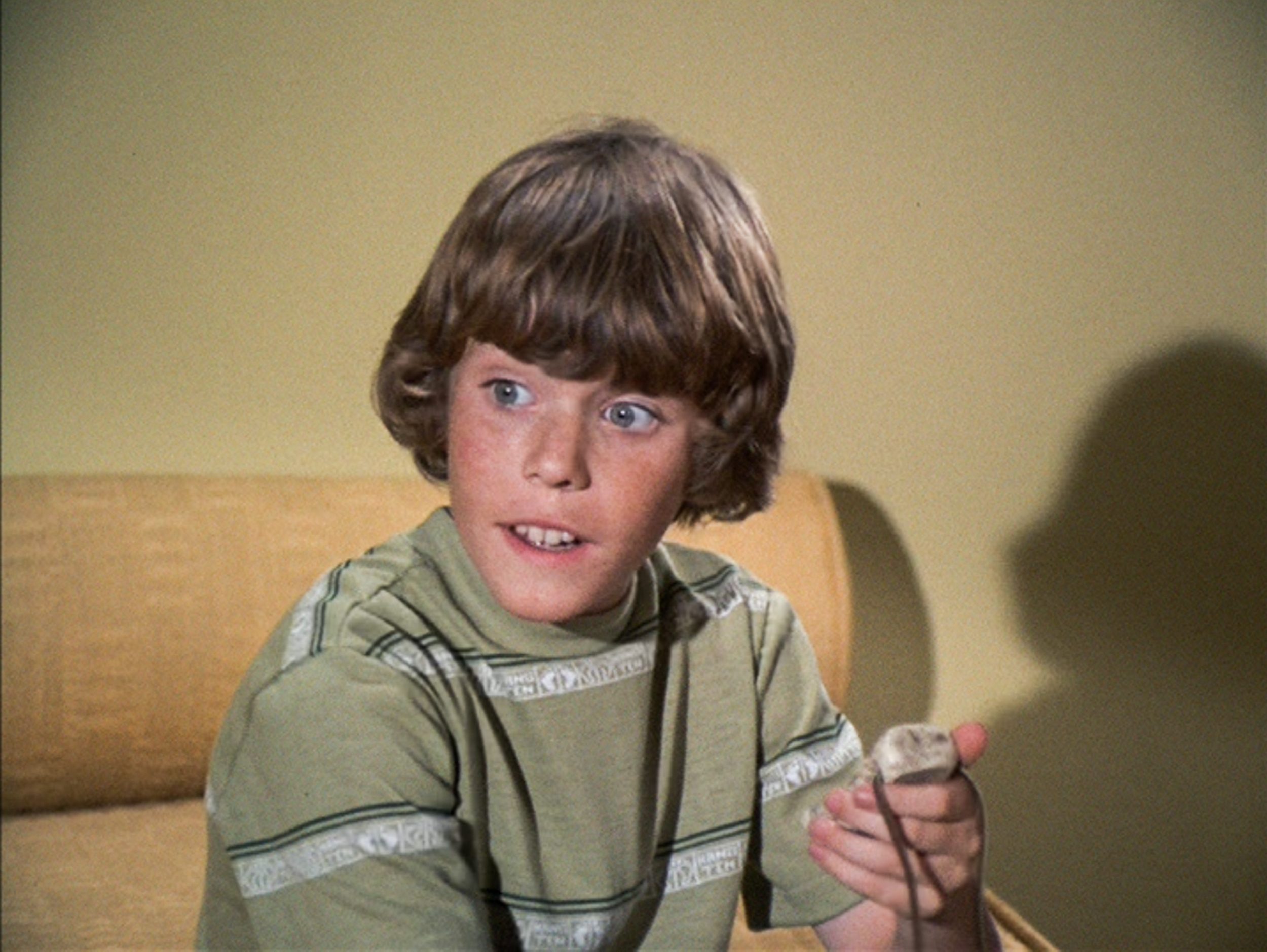Brady Bunch' Star Mike Lookinland Said This Became a 'Problem' After Bobby  Brady: 'I Lived My Childhood in My 20s'