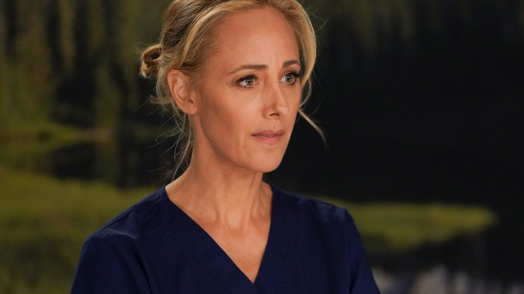 Kim Raver as Teddy Altman on 'Grey's Anatomy' Season 16