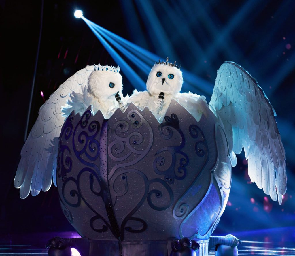 'The Masked Singer' Fans Are Convinced the Snow Owls Are a Married Celebrity Couple