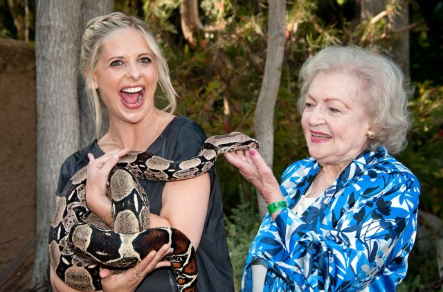 Why Betty White Loves Animals So Much