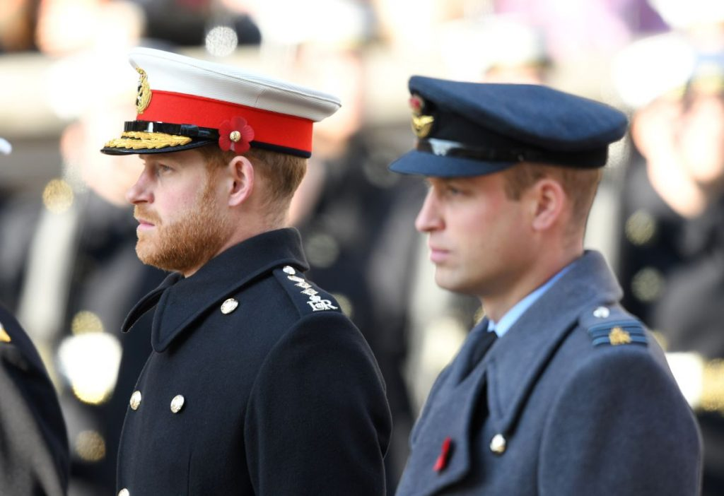 rince Harry, Duke of Sussex and Prince William, Duke of Cambridge