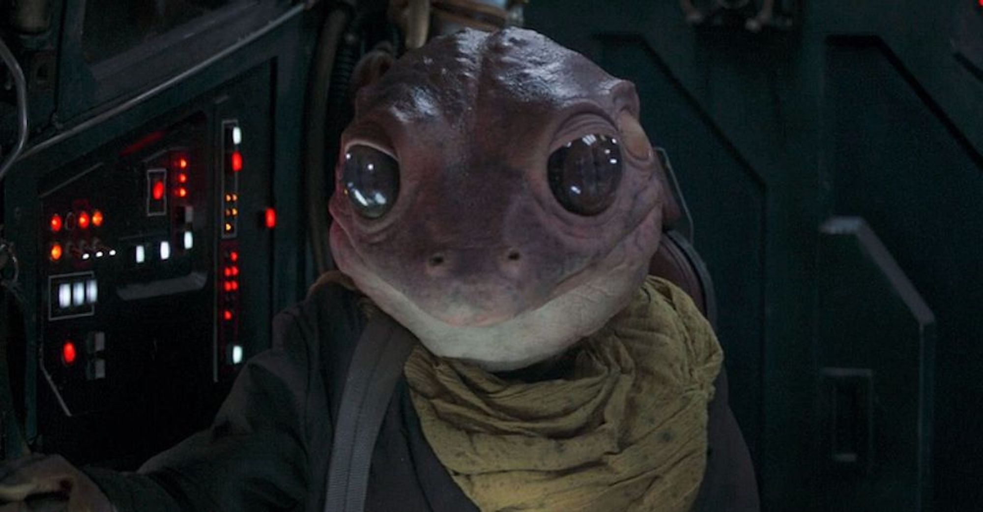 Frog Lady from Season 2 of 'The Mandalorian'