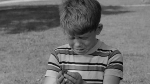 Ron Howard in 'Opie the Birdman'