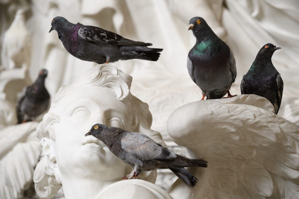 Taxidermy birds on stone statues