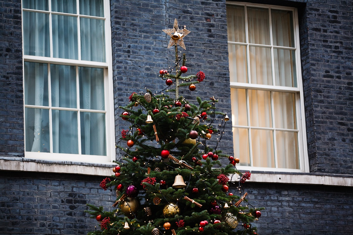 The Downing Street Christmas tree