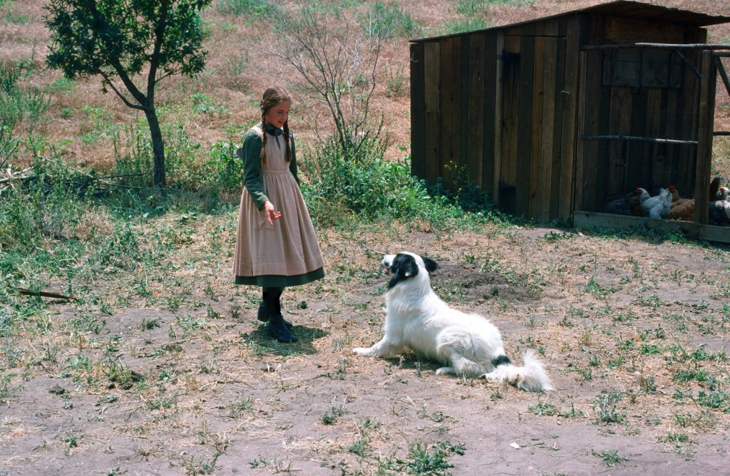 Melissa Gilbert and Jeffrey, known as Bandit on 'Little House on the Prairie'